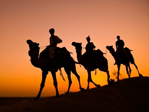 Explore the India (1)