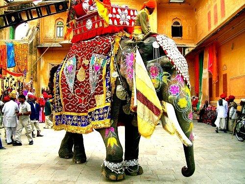 Explore the India (2)