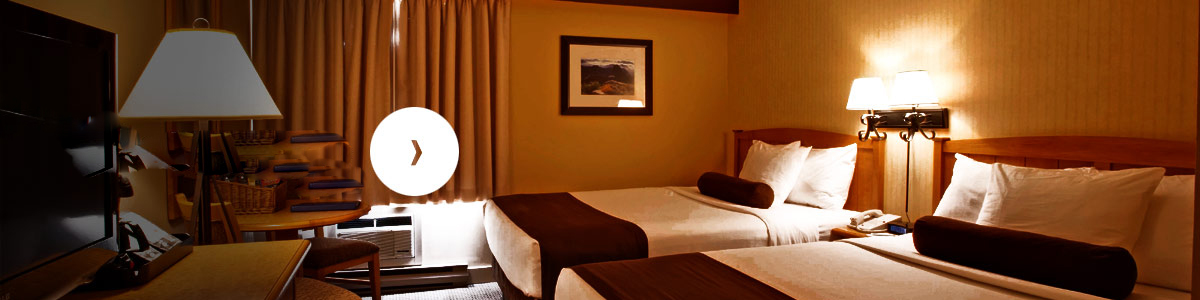 hotel_booking_up